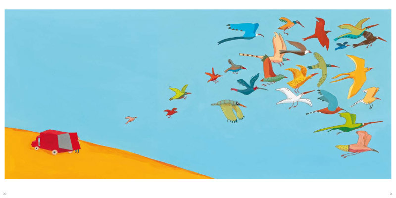 oiseaux_INT_light-9-800x400